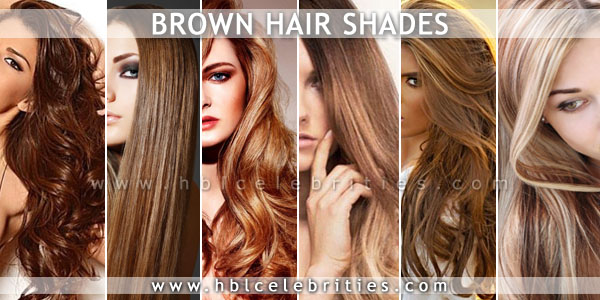 Classic Highlights for Brown Hair Shades