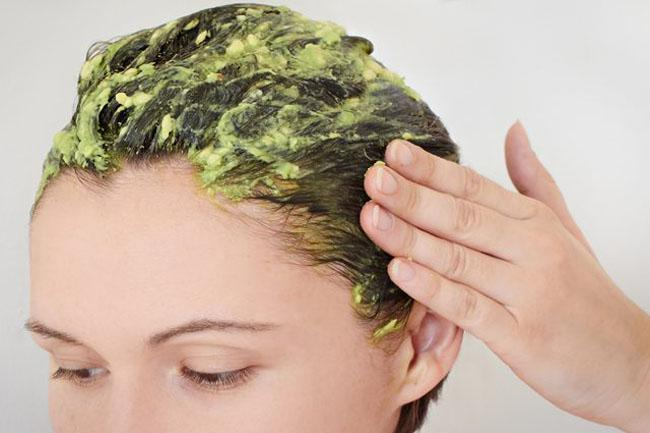 Avocado and Olive Oil Hair Conditioner