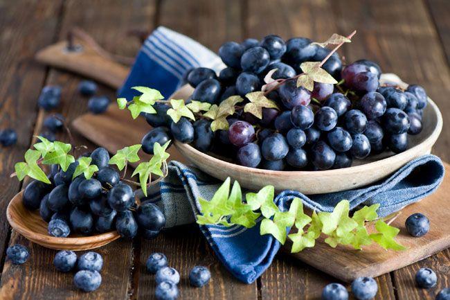 Growing a Blueberry Bush