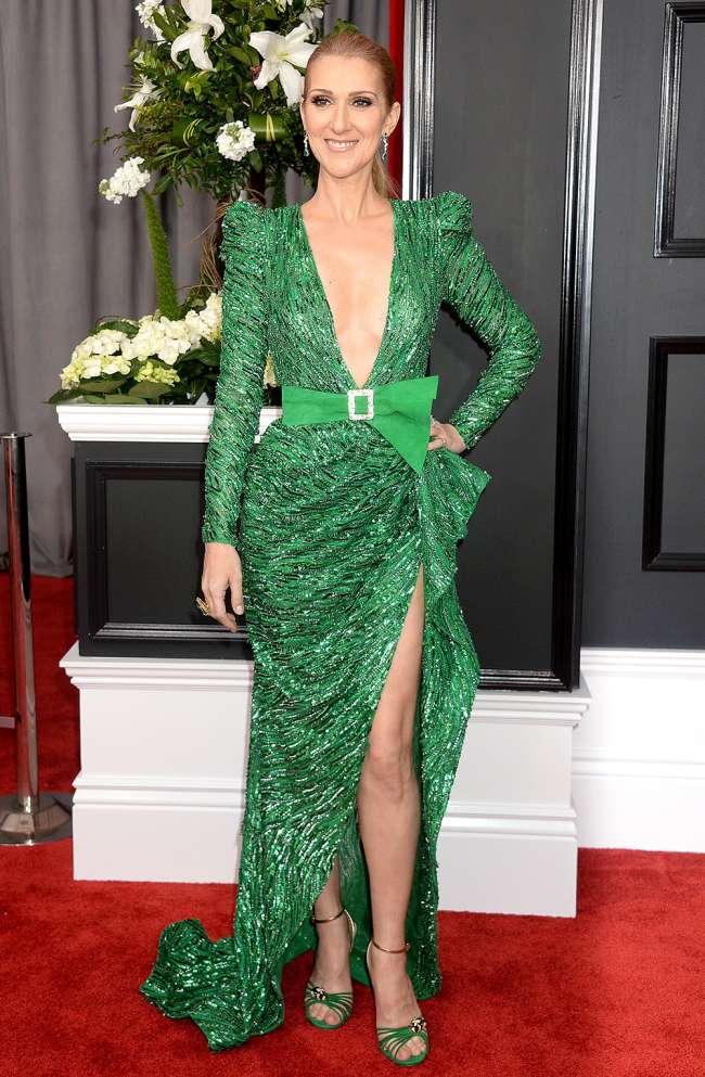 Celine Dion Sexiest Grammy Dresses